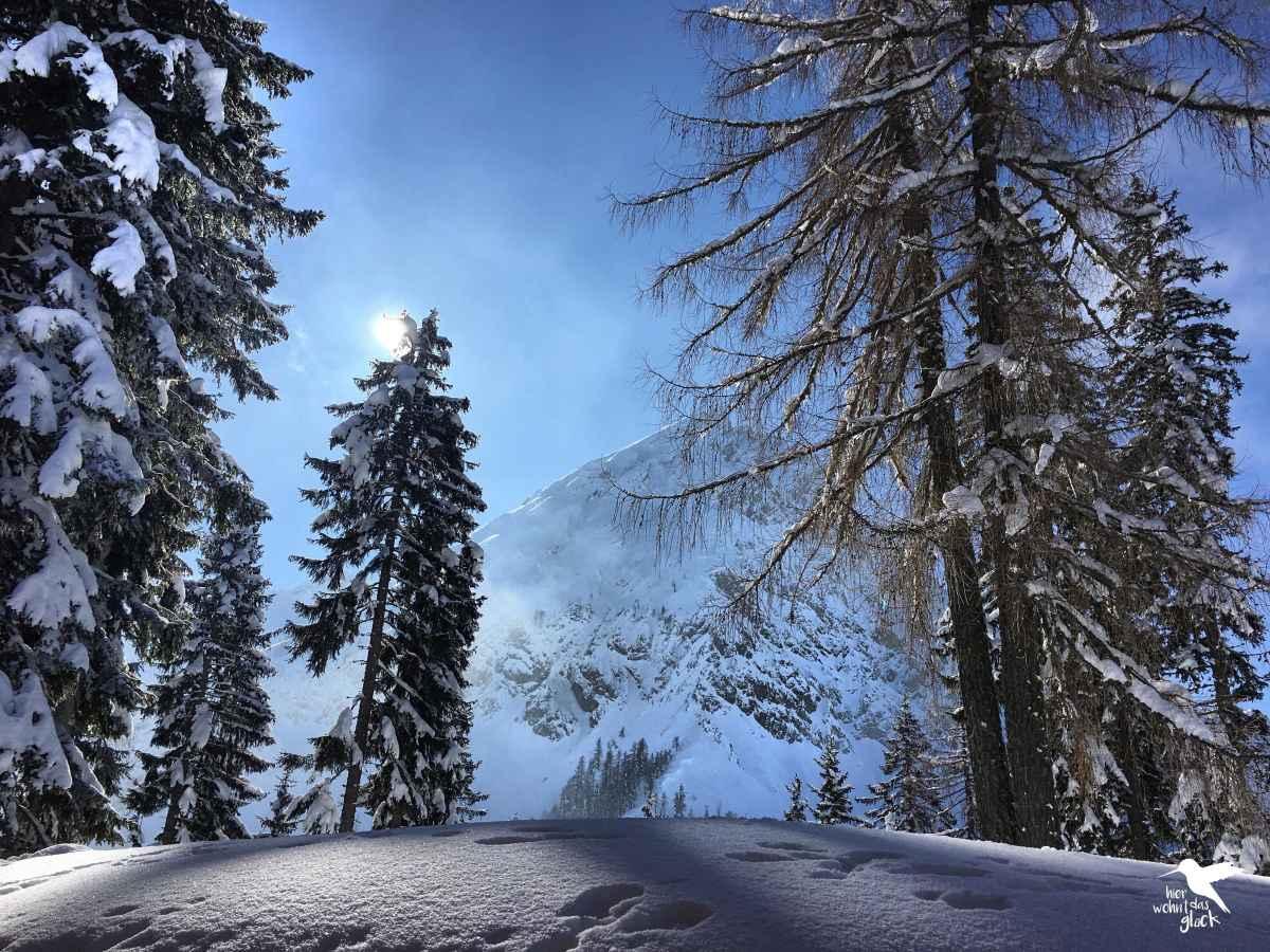 Schneewanderung zur Bertahütte