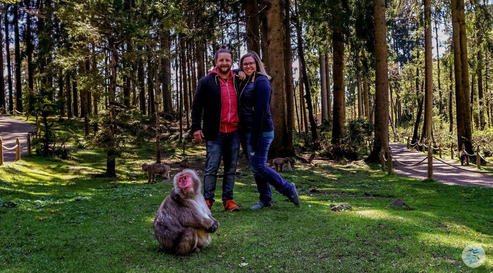 Muttertag am Affenberg in Landskron
